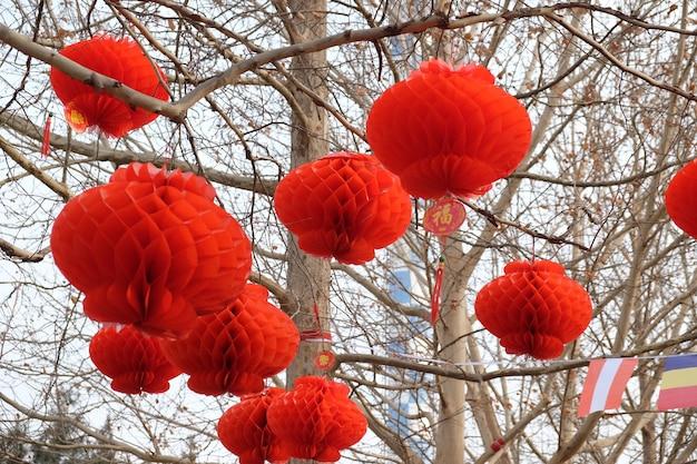 Foto de lanternas chinesas vermelhas penduradas em árvores com inscrições chinesas que significam