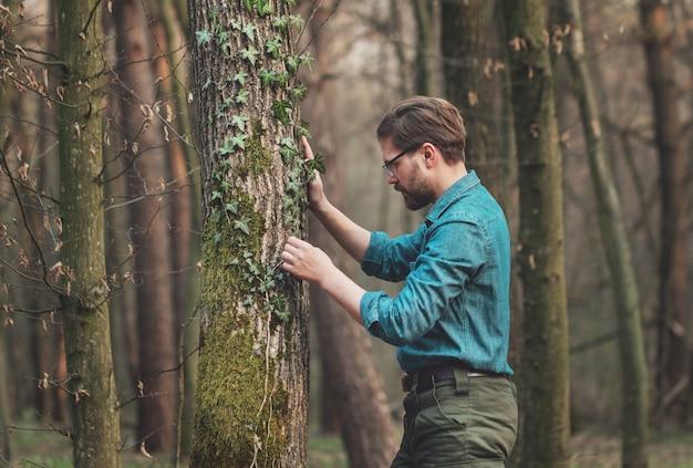 Foto de meio corpo de um homem curioso estudando hera entrelaçada em árvore em pé na floresta decídua