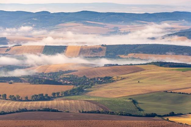 Foto de paisagem de belos campos de grama amarela em uma área rural