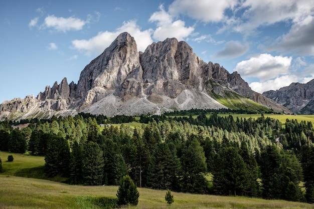 Foto de paisagem de tirar o fôlego de uma bela montanha branca com uma floresta de árvores sempre-verdes em sua base