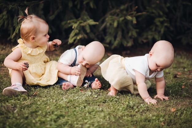 Foto de três irmãos ou irmãs mais novos engatinhando em uma grama verde e se divertindo juntos no parque de verão