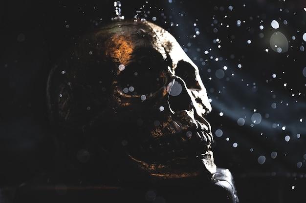 Foto de um crânio humano em preto