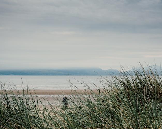 Foto de uma praia em um dia sombrio, um homem caminhando pela costa