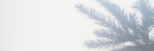 Foto desfocada de uma sombra de um galho de árvore de natal em um fundo branco e cinza de uma parede ou mesa. bandeira