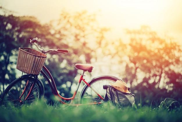 Foto do vintage da bicicleta no jardim na paisagem do verão.