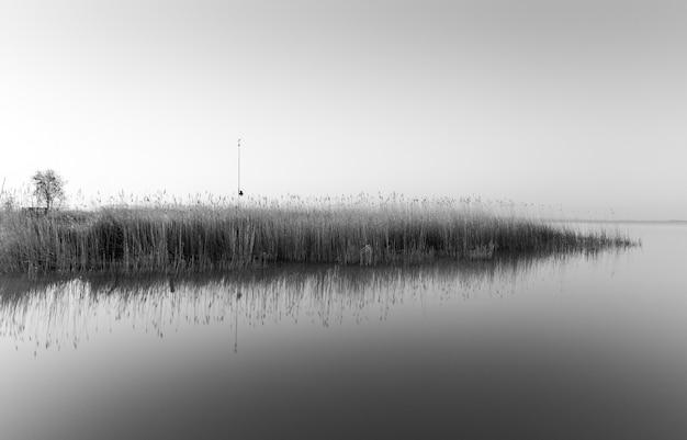 Foto em escala de cinza de uma pequena ilha com muita grama refletindo no mar
