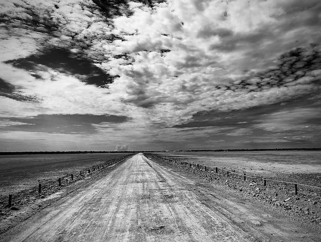 Foto em tons de cinza do etosha pan no parque nacional etosha, na namíbia, sob um céu nublado