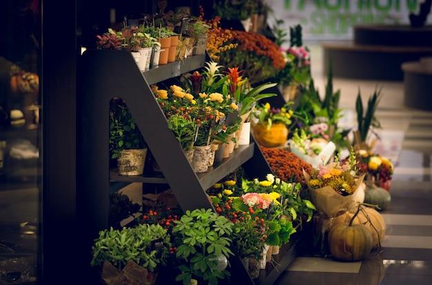 Foto em tons de um suporte de madeira com flores em uma floricultura