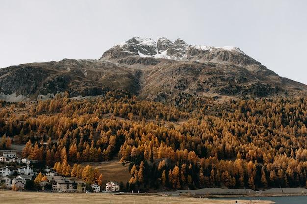 Foto fantástica de uma montanha coberta de neve com densas florestas e folhagem de outono colorida