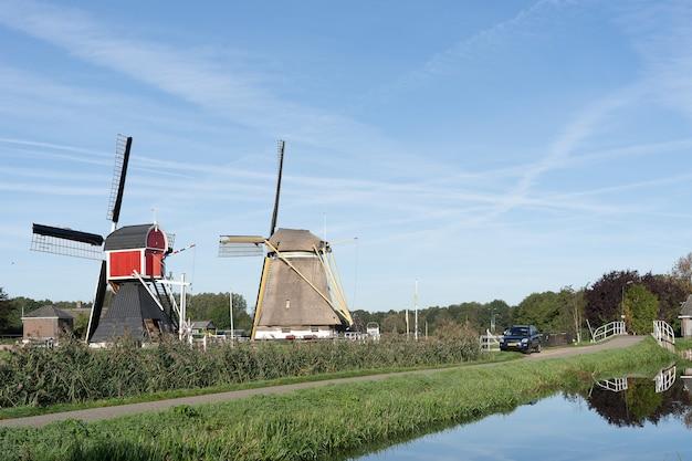 Foto grande angular de dois moinhos de vento cercados por árvores e vegetação sob um céu azul claro