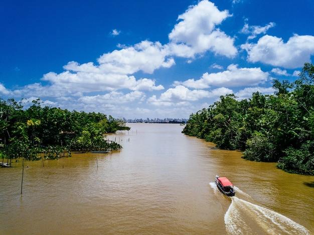 Foto grande angular de um barco navegando em um rio e passando por entre as árvores