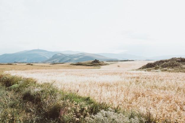 Foto grande angular de uma paisagem seca com montanhas sob um céu nublado