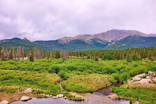 Foto hipnotizante de uma bela floresta cercada por montanhas verdes sob um céu sombrio