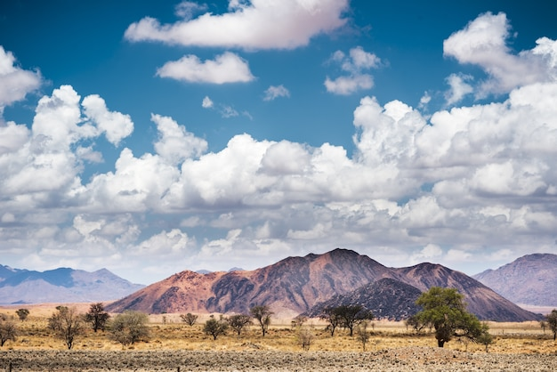 Foto horizontal da paisagem no deserto do namibe na namíbia, sob o céu azul e nuvens brancas