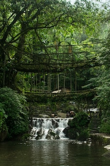 Foto incrível de uma cachoeira cercada pela bela natureza no primeiro plano de uma ponte velha