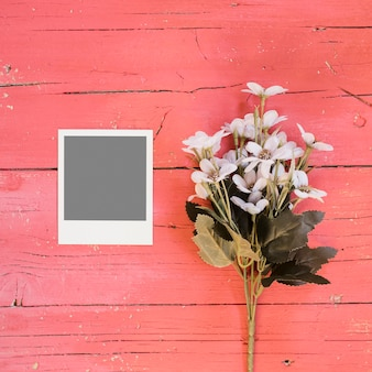 Foto instantânea com flores violetas