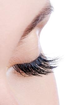 Foto macro de um olho feminino com longos cílios postiços