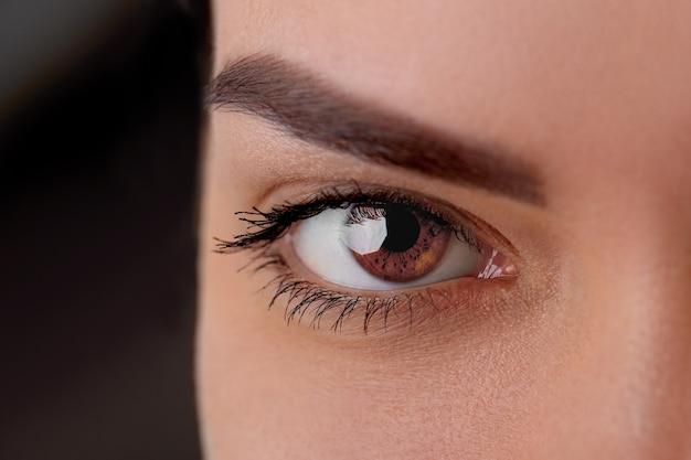 Foto macro linda de olhos femininos com cílios longos e maquiagem preta. maquilhagem de formato perfeito e pestanas compridas. cosméticos e maquiagem.