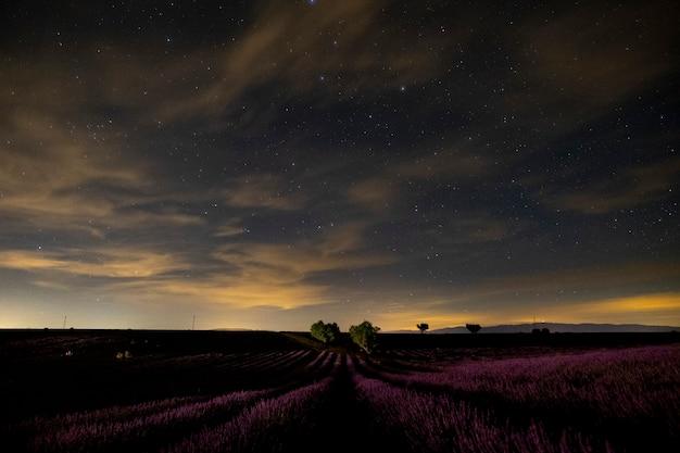 Foto noturna de campo de lavanda na frança, provence valensole - bela vista de flores violetas e estrelas no céu - local de produção de fragrâncias de perfume e viagens panorâmicas da natureza ao ar livre