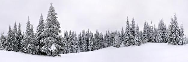 Foto panorâmica de alta qualidade de uma paisagem de inverno