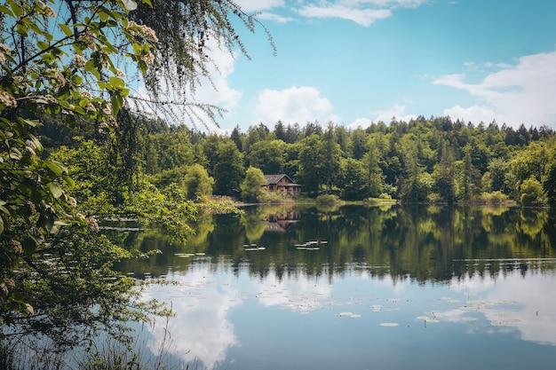 Foto panorâmica de um belo lago rodeado por árvores verdes e uma casa isolada sob o céu nublado