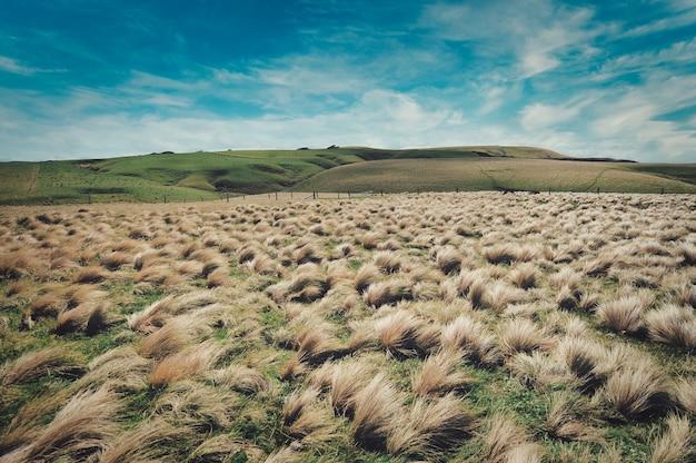 Foto panorâmica de um campo de grama com grandes colinas ao longe em um dia ensolarado