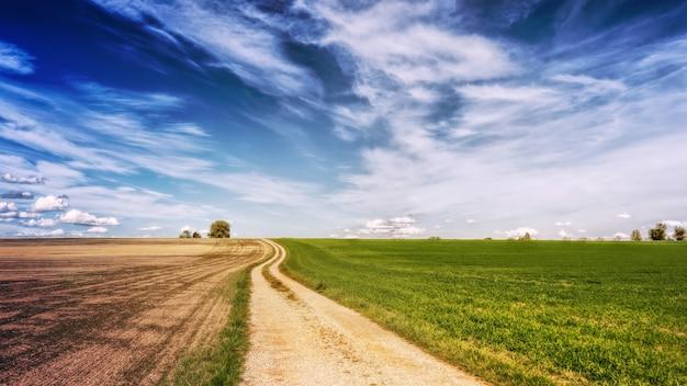 Foto panorâmica de uma estrada marrom ao lado de campos de grama verde