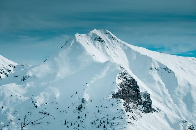 Foto panorâmica do pico da montanha coberto de neve com algumas árvores alpinas na base da montanha