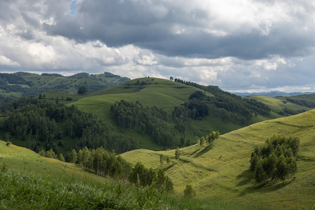 Foto panorâmica do pitoresco parque natural de apuseni, na região da transilvânia da romênia