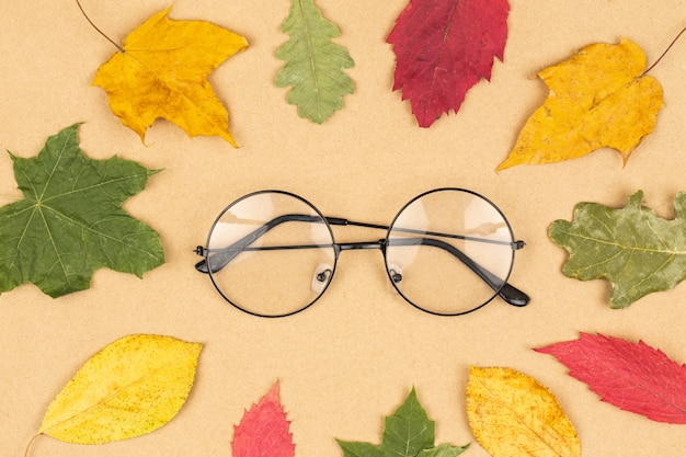 Foto plana leiga com óculos e folhas masculinas secas no fundo branco. conceito de outono ou outono. composição de outono