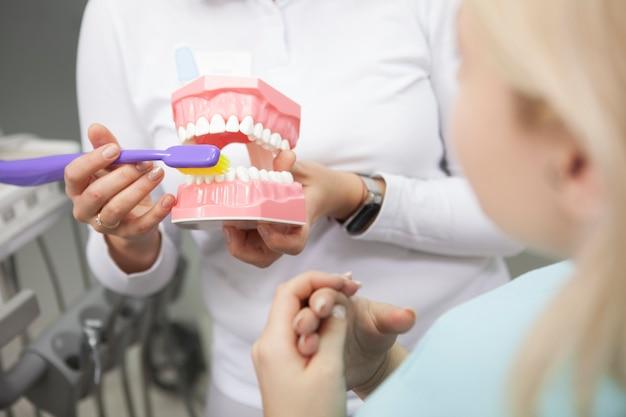 Foto recortada de uma dentista mostrando à paciente como escovar os dentes corretamente, usando um modelo de dentadura