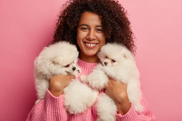 Foto recortada de uma linda mulher afro-americana brincando com filhotes, segurando dois cachorros spitz brancos que expressam lealdade e devoção, aprende sobre tratamento para animais de estimação