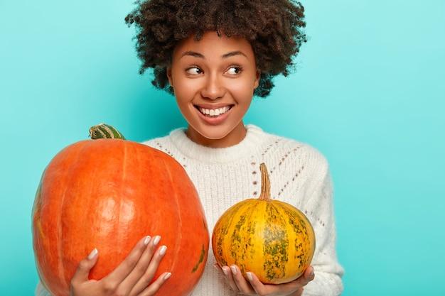 Foto recortada de uma mulher afro-americana sorridente segura grandes e pequenas abóboras colhidas no jardim de outono, usa um suéter de tricô branco e parece positivamente de lado.