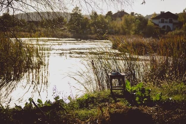Foto tonificada de lago com grama alta crescendo na costa