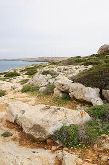 Foto vertical da costa cheia de pedras e grama