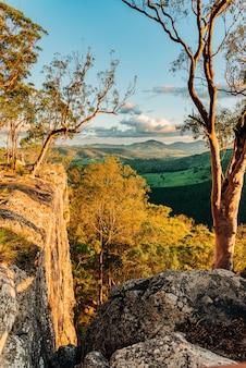 Foto vertical das belas árvores nas montanhas, capturada em queensland, austrália