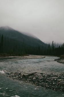 Foto vertical das pedras no rio sob as montanhas cobertas de névoa