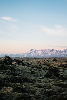 Foto vertical das texturas do terreno na islândia com uma montanha coberta de neve ao fundo