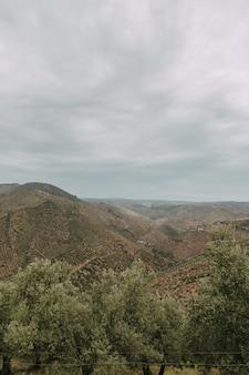 Foto vertical de alto ângulo de uma cadeia de montanhas com árvores verdes sob o céu nublado