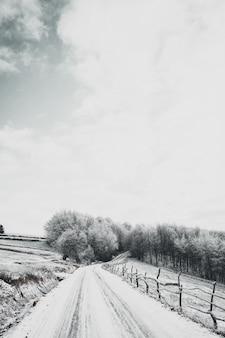 Foto vertical de alto ângulo de uma estrada com neve que leva à floresta