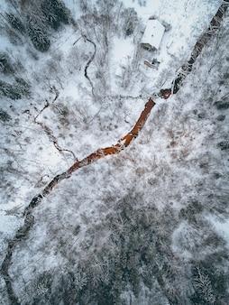 Foto vertical de alto ângulo de uma paisagem coberta de neve com muitas árvores sem folhas