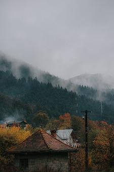 Foto vertical de casas rurais e árvores coloridas em uma floresta de outono