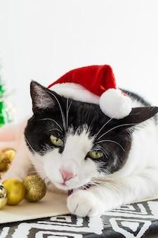 Foto vertical de gato branco e preto com chapéu de papai noel de natal com enfeites em uma mesa