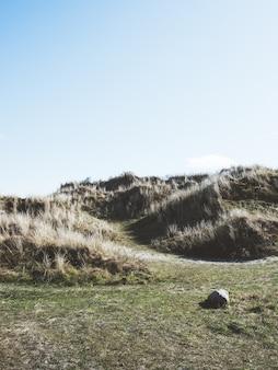 Foto vertical de montanhas cobertas de vegetação sob a luz do sol