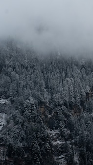 Foto vertical de montanhas em manali, himachal pradesh, índia