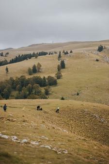 Foto vertical de pessoas na montanha de vlasic, na bósnia, em um dia sombrio
