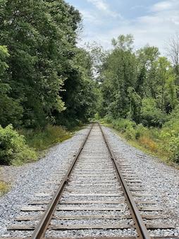 Foto vertical de trilhos de trem cercados por árvores