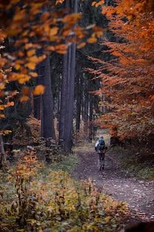 Foto vertical de um alpinista caminhando na floresta no outono
