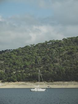 Foto vertical de um barco navegando no mar cercado por vegetação