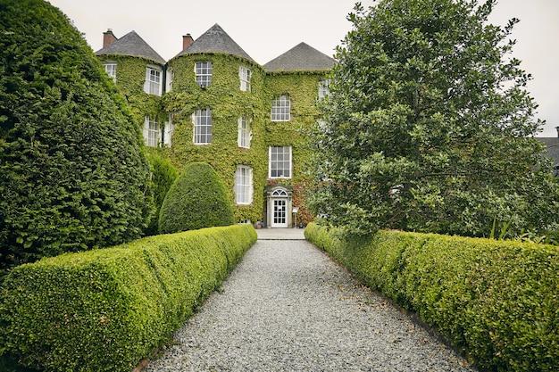 Foto vertical de um caminho em kilkenny dukesmeadows